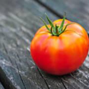 Jersey Fresh Garden Tomato Poster
