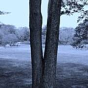 Jesus Christ Tree Cyan Poster