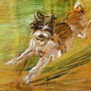Jumping Dog Schlick 1908 Poster