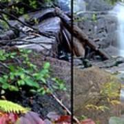 Jungle Falls Poster