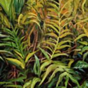 Jungle Ferns Poster