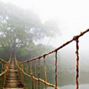 Jungle Journey Poster