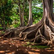 Jurassic Park Tree Group Poster