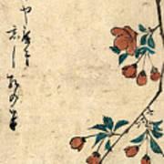 Kaido Ni Shokin - Small Bird On A Branch Of Kaidozakura Poster