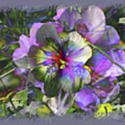 Kaleidoscope Pollen Poster