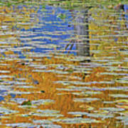 Kaloya Pond Autumn Poster