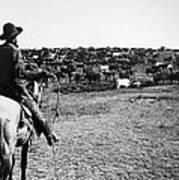 Kansas: Cattle, C1900 Poster