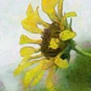 Kate's Sunflower Poster