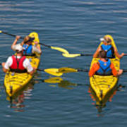 Kayakers In Bar Harbor Maine Poster