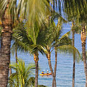 Kayakers Through Palms Poster