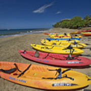 Kayas On Beach Poster
