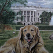 Kelli On The White House Lawn Poster