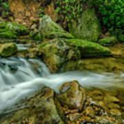 Kens Creek In Cranberry Wilderness Poster