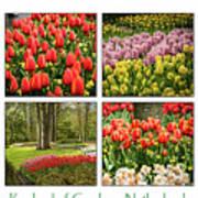 Keukenhof Garden Collage Poster