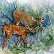 Key Deer Poster