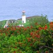 Kilauea Lighthouse Kauai Hawaii Poster