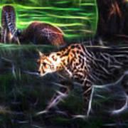 King Cheetah And 3 Cubs Poster