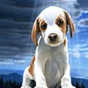 King Of The World-beagle Puppy Poster