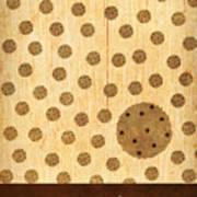 Kitchen Art - Cookie Poster by Linda Tieu
