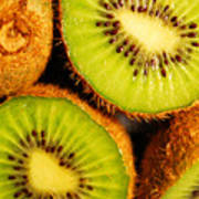 Kiwi Fruit Poster by Nancy Mueller