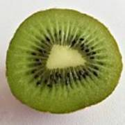 Kiwi Poster