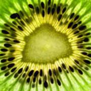 Kiwi Up Close Poster