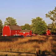 Knox Farm 5194 Poster