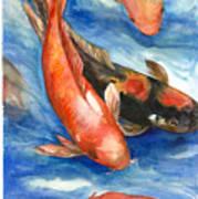 Koi Fish Poster