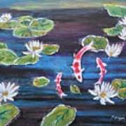 Koi In Lilly Pond Poster