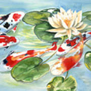 Koi In The Water Lilies Poster