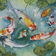 Koi  With Lilies Poster