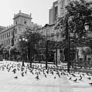 Kotzia Square, Athens Poster