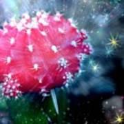 Kozmic Cactus Poster