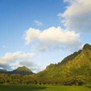 Kualoa Ranch Poster by Dana Edmunds - Printscapes