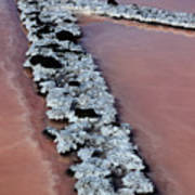 La Palma, Canary Island, Red Algae, Dunaliella Salina In The Crystallization Basin Poster