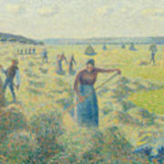 The Harvesting Of Hay Eragny  Poster