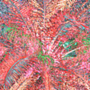Lacy Pink Palms Poster