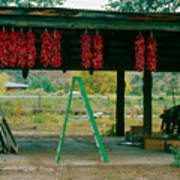 Ladder And Ristras Sopyn's Fruit Stand Rinconada Nm Poster