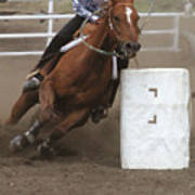 Ladies' Barrel Racing Poster