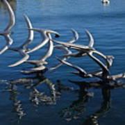 Lake Birds Poster