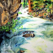 Lake Como Waterfall Poster