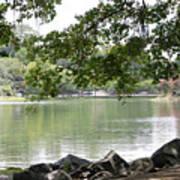 Lake Ella, Tallahassee Poster