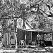Lake House Black And White Poster