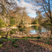 Lake In Early Springtime Woodland Poster