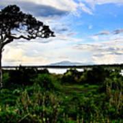 Lake Ndutu Shores Poster