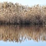 Lake Reflexion Poster