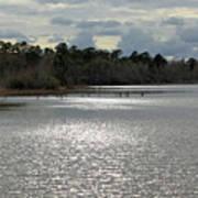 Lake Waccamaw II Poster