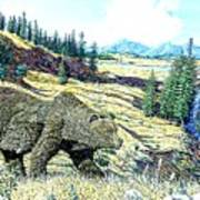 Lamar Valley Grizz Poster