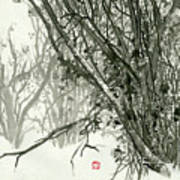 Landscape - 78 Poster