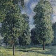 Landscape At Sevres Poster